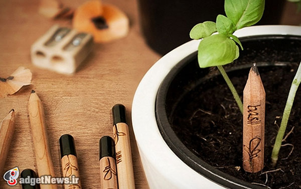 sprout pencil