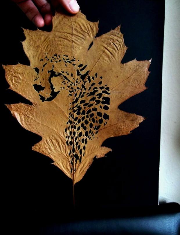 leaf-cutting-omid-asadi-5