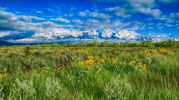 rand Teton National Park, Wyoming, USA