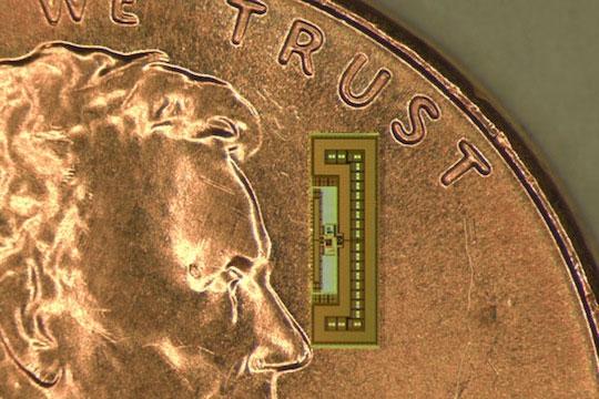 tiny-ant-sized-radio-1