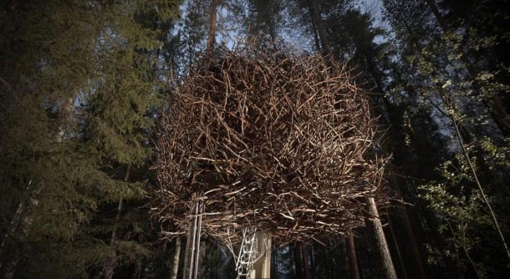 Bird's Nest, Tree Hotel, Harads, Sweden