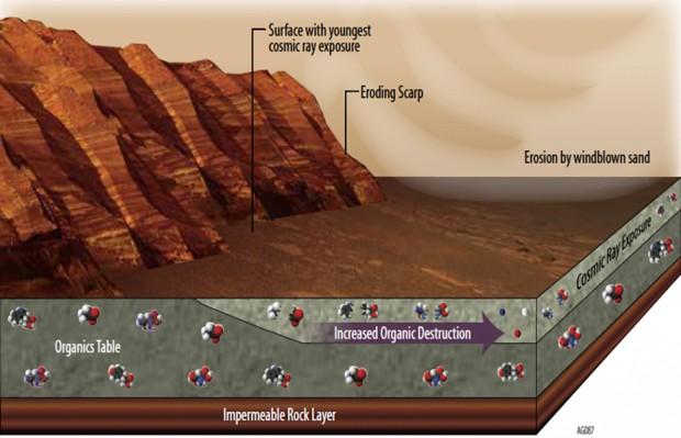 این طرح نشان میدهد که چرا یافتن مواد شیمیایی ارگانیک در سطح مریخ دشوار است.به هر طریقی که این موارد در مریخ تشکیل و یا به آنجا منتقل شده باشند، راههای زیادی برای تبدیل یا از بین رفتن آنها وجود دارد.