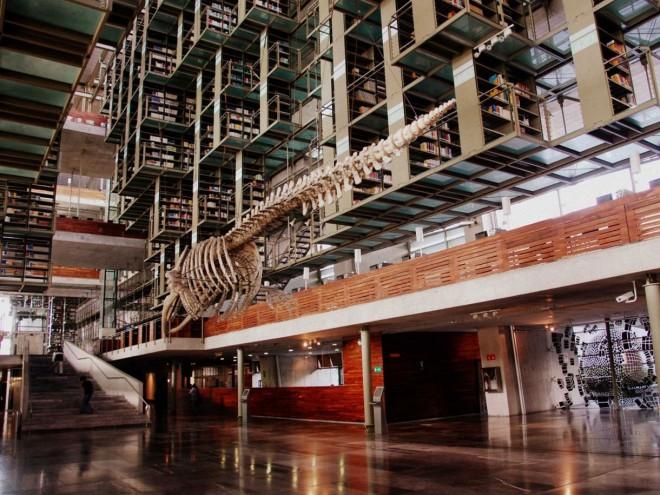کتابخانه  خوزه واسکونسلوس در مکزیکو سیتی