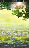 ۲_green_spring.jpg