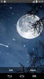 ۲_moon_light.jpg