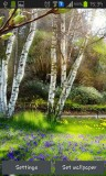 ۳_green_spring.jpg