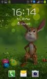 ۴_easter_bunny.jpg