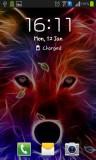 ۴_wolf.jpg