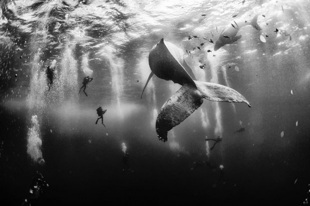 national-geographic-traveler-photo-contest-2015-1