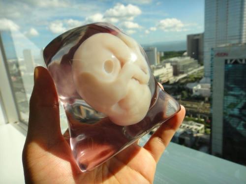 ۳d-fetus