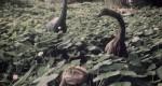 تماشا کنید: دایناسورها به طرز اعجابآوری عکسهای سفر را زیبا میکنند!
