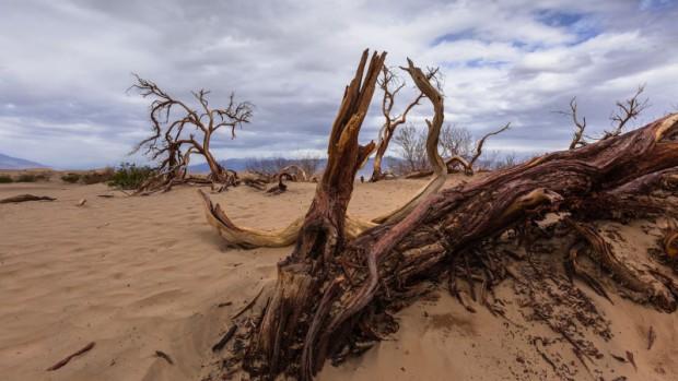 شکوه Death Valley ؛ درهی مرگ را تابهحال به این زیبایی ندیده بودید
