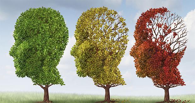 تولید نرمافزار تشخیص آلزایمر به کمک الگوی صحبت کردن افراد
