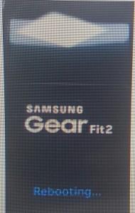 دستبند سامسونگ Gear Fit 2