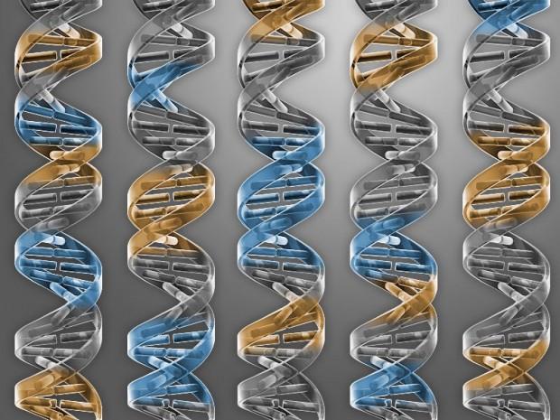 آیا جلسهی جنجالی دانشمندان هاروارد دربارهی تولید انسان واقعی بوده است؟