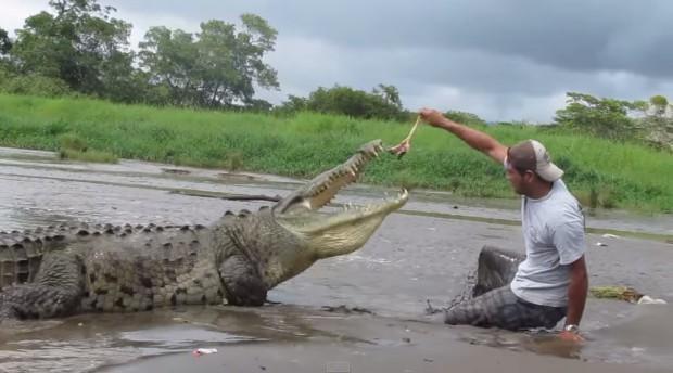 تصاویر این حیوانات غول پیکر باعث میشوند که به چشمان خود شک کنید!