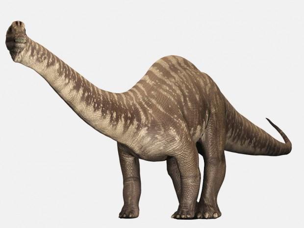 دایناسور دیپلودوکوس