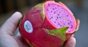 عجیب ترین میوه های جهان