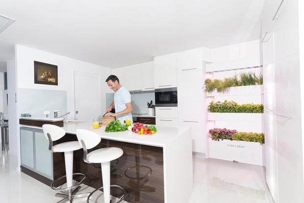 مزرعه دیواری معرفی شد ؛ با تازهترین تکنولوژی کشاورزی در خانه آشنا شوید