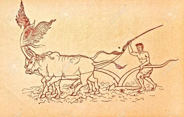مردان وایکینگ بیشتر وقتشان را کشاورزی میکردند بیشتر مردان وایکینگ به جای شمشیر، داس در دست داشتند. بعضی از آنها راهزنان بیعاطفهای بودند که فقط برای غارت و آتش زدن روستاها سوار قایقهایشان میشدند، اما بیشترشان، دستکم در بخشی از سال، در صلح و صفا غلات میکاشتند. آن ها همچنین در مزرعه های کوچکشان و معمولا فقط به میزان مورد نیاز خانواده ی خود، گاو ،بز، خوک و گوسفند پرورش می دادند.