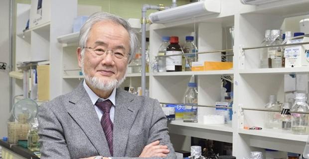 جایزه نوبل پزشکی سال 2016