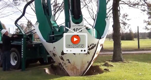 انتقال درختان به مکان دیگر بدون نیاز به قطع کردن