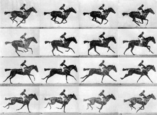تصویر علمی اسب در حال حرکت توسط ادوارد مویبریج