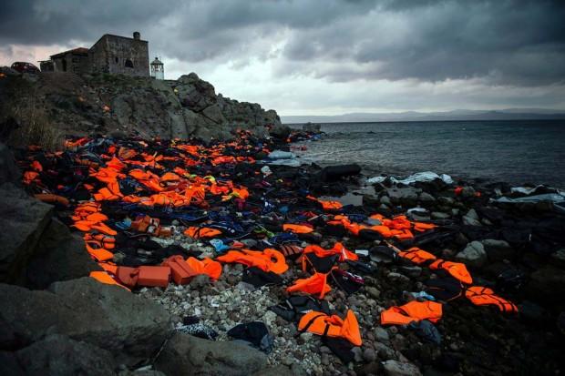 مسابقه عکاسی زیست محیطی سال 2016