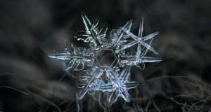 دانه های برف
