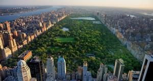 مساحت فضای سبز شهرهای بزرگ جهان چقدر است؟ + تصاویر