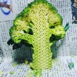 """کنده کاری های حیرتانگیز بر روی میوه توسط هنرمند ژاپنی """"گاکو"""""""