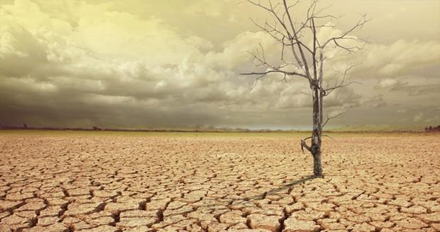 گرم شدن زمین