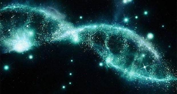 طراحی نژاد و ساختار ژنتیکی انسان