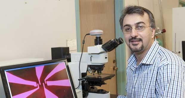 دستاوردهای محققان ایرانی