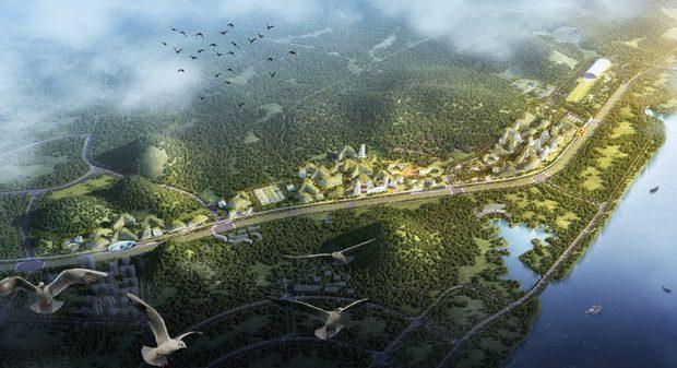 شهر جنگلی چین