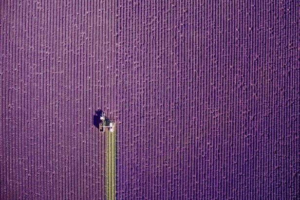 مسابقه عکاسی هوایی Dronstagram 2017