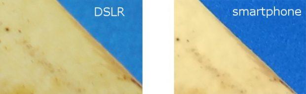 مقایسه گستره رنگی و فوکاس دوربین موبایل و DSLR