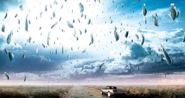بارش ماهی از آسمان مکزیک ؛ پدیدهای عجیب و غافلگیرکننده