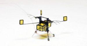 زنبور رباتیک RoboBee؛ اختراعی شگفتانگیز با قابلیت شیرجه، شنا و پرواز + ویدیو