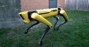 ربات سگ بوستون داینامیکس
