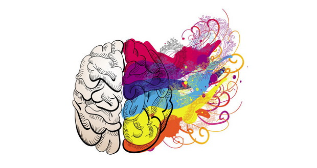 تفاوت بین نیمکره های مغز ؛ خلاقیت و هنر در مقابل استدلال و منطق