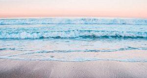 کشف خانوادهای از ویروس های ناشناخته در آبهای اقیانوس