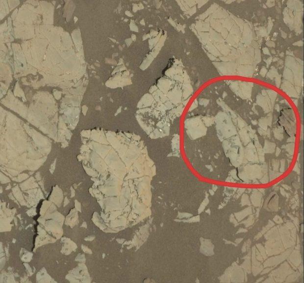 اجسام عجیب در مریخ