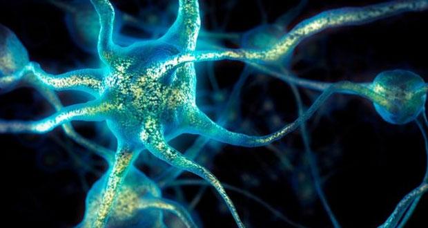 فناوری مغزی