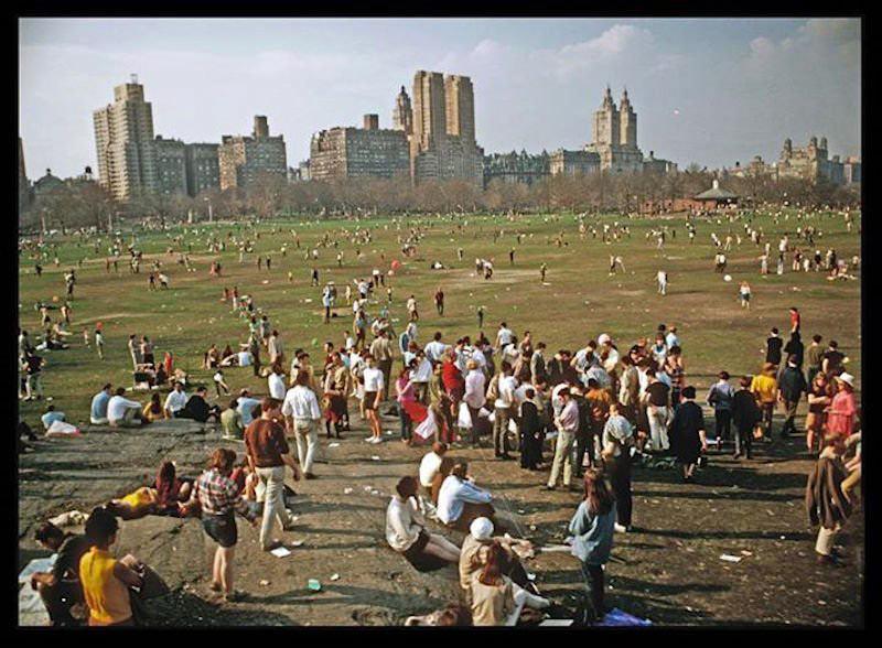 تصاویر تاریخی از سنترال پارک نیویورک زمانی که گوسفندان در آن می چریدند!