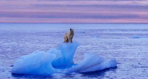 افزایش سطح آب دریاها تا سال 2100 از دو برابر بیشتر خواهد شد!