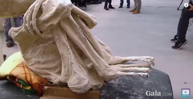 دانشمندی روسی صحت بقایای موجودات فضایی مومیایی شده را تایید کرد!