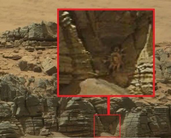 اکتشافات مرموز مریخ که بسیاری را به وجود فرازمینی ها متقاعد کردهاند!