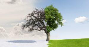 اعتدال بهاری یا همان لحظه تحویل سال چگونه رخ میدهد؟