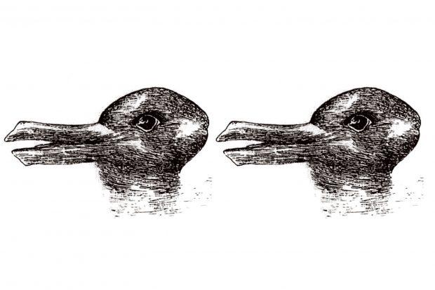با مکانیسم عجیب مغز در هنگام مشاهده برخی تصاویر خطای دید آشنا شوید